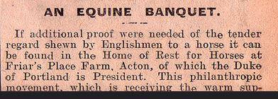 Equine banquet